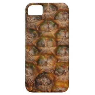 Pin Apple iPhone 5 Cases