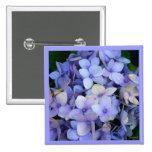Pin azul del Hydrangea