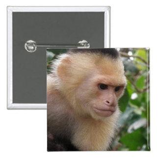 Pin blanco del mono del capuchón de Cheeked