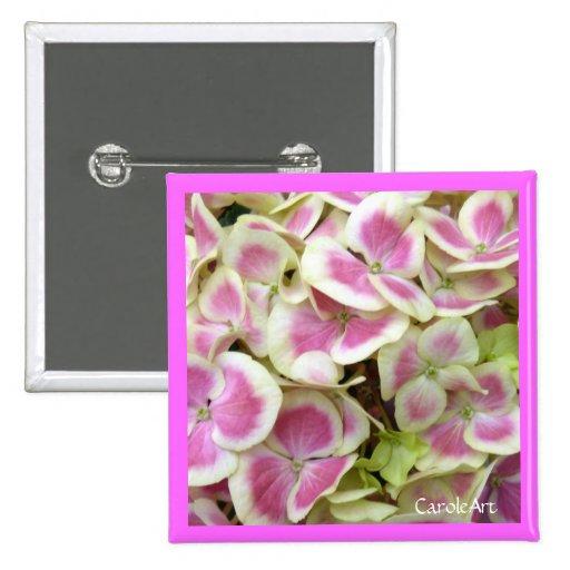 Pin blanco rosado de los pétalos del Hydrangea