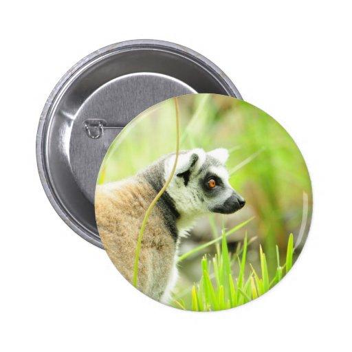 Pin - Bulto atado anillo del lemur