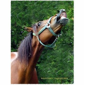 Pin chistoso de la actitud del caballo escultura fotográfica