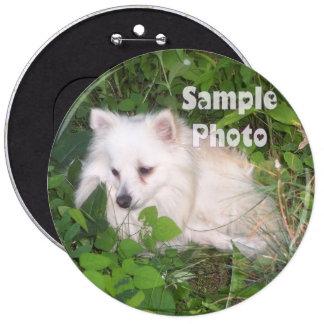 Pin COLOSAL del botón de la foto del mascota de 6
