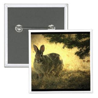 Pin cuadrado de los conejos salvajes