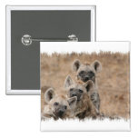 Pin cuadrado de los Hyenas