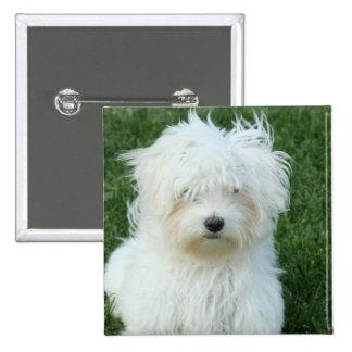 Pin cuadrado de los perritos malteses