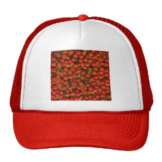 Pin Cushion/Tiny Tomato Trucker Hat