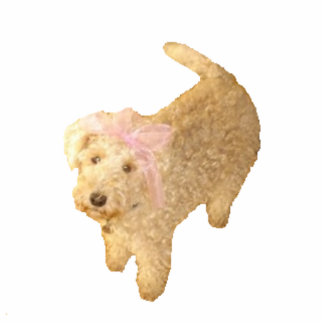 Pin Cute Lakeland Terrier Cutout