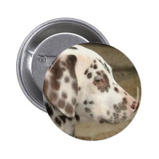 Pin dálmata del perrito pin redondo 5 cm