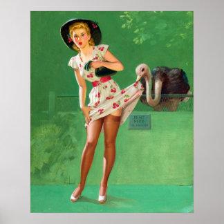 Pin de la avestruz para arriba póster