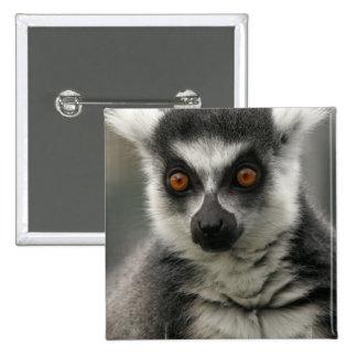 Pin de la cara del Lemur