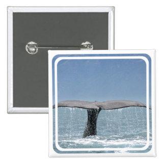 Pin de la cola de la ballena