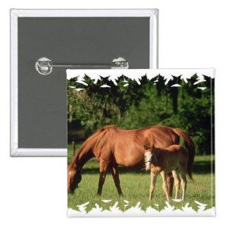 Pin de la familia del caballo