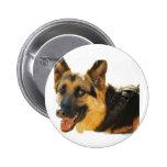 Pin de la foto del perro de pastor alemán