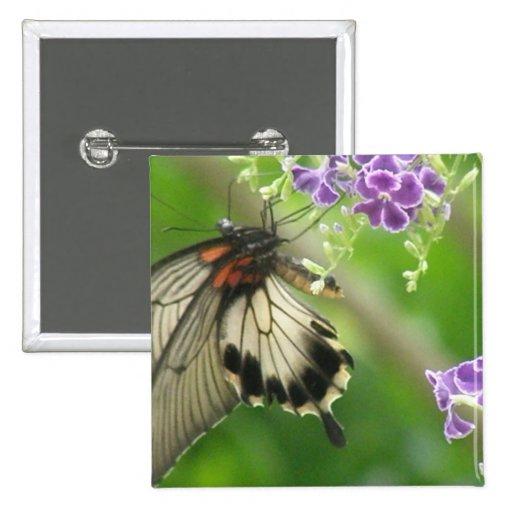 Pin de la mariposa de Swallowtail
