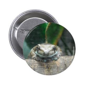 Pin de la rana de la leche del Amazonas Pin Redondo 5 Cm