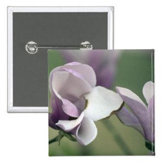 Pin del árbol de la magnolia