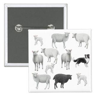 Pin del border collie y de las ovejas