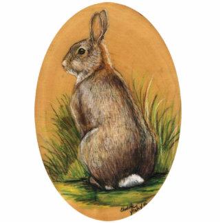 """Pin """"del conejo de conejito salvaje"""" pin fotoescultura"""