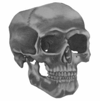 Pin del cráneo pin fotoescultura