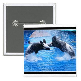 Pin del cuadrado de la foto de la ballena