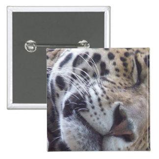 Pin del cuadrado de la imagen del leopardo