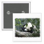 Pin del cuadrado de la panda gigante