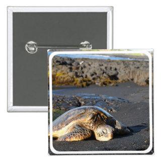 Pin del cuadrado de la tortuga de mar pin cuadrada 5 cm