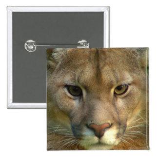 Pin del cuadrado del gato de la montaña del puma pin cuadrada 5 cm