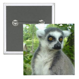 Pin del cuadrado del Lemur de Madagascar