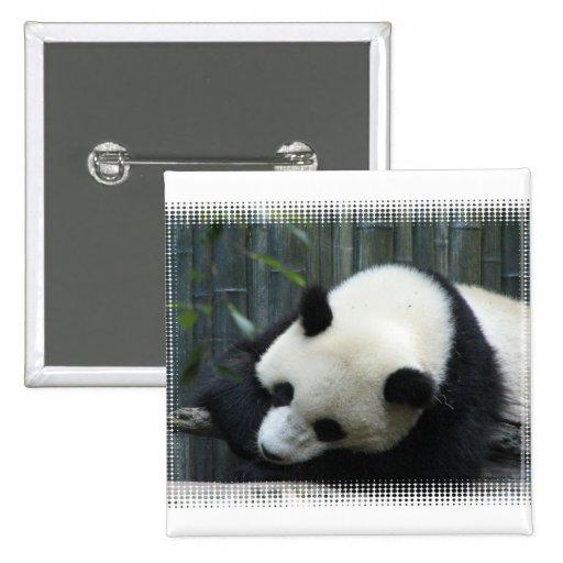 Pin del cuadrado del oso de panda pin cuadrada 5 cm
