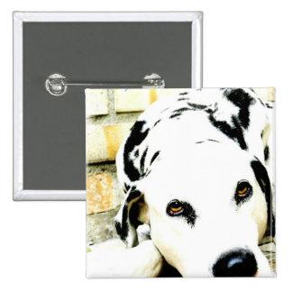 Pin del Dalmatian el dormir Pin Cuadrada 5 Cm