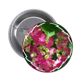 Pin del Hydrangea de las rosas fuertes
