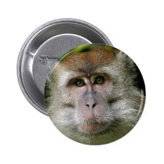 Pin del mono de Patas