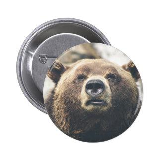 Pin del oso grizzly pin redondo 5 cm
