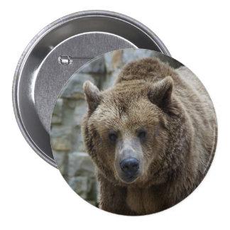 Pin del oso grizzly pin redondo 7 cm