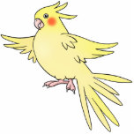Pin del pájaro del Cockatiel Escultura Fotografica