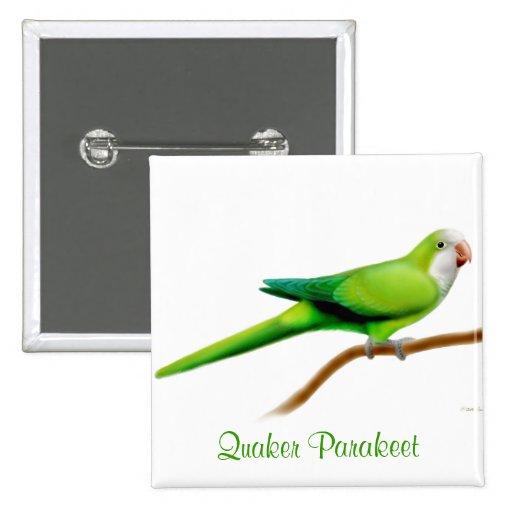 Pin del Parakeet del monje del Quaker Pin Cuadrada 5 Cm