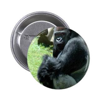 Pin del resplandor del gorila
