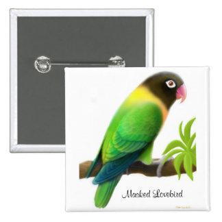 Pin enmascarado del verde del Lovebird