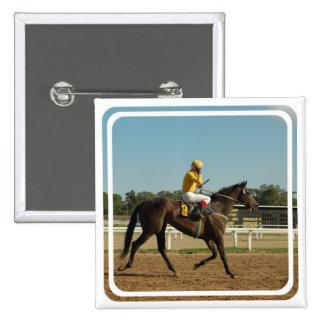 Pin excelente del cuadrado del caballo de raza