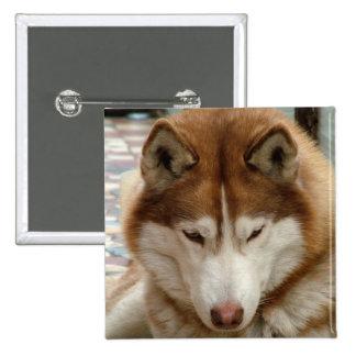 Pin fornido de Brown Pin Cuadrada 5 Cm