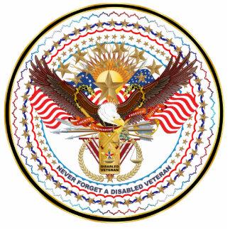Pin patriótico de la solapa del veterano pin fotoescultura