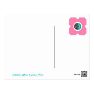Pin&Pon Popbabo Postcard