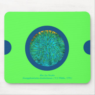 Pin&Pon Popbluer Mouse Pad