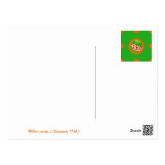 Pin&Pon Popmitra Postcard