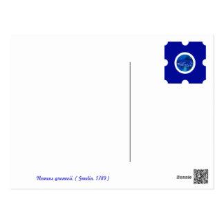 Pin&Pon Popnomeus Postales