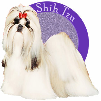 Pin púrpura de la foto de Shih Tzu Pin Fotoescultura