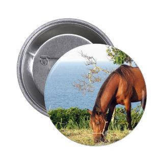 Pin redondo de la foto cuarta del caballo