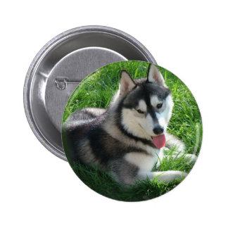 Pin redondo del perro del husky siberiano pin redondo 5 cm